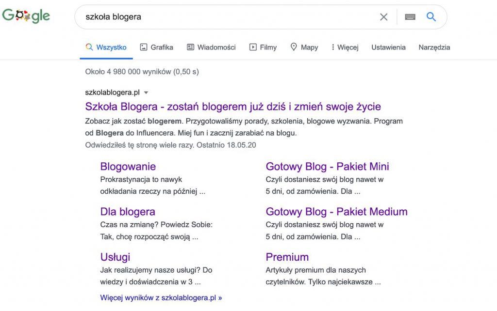 Firma w internecie - Google
